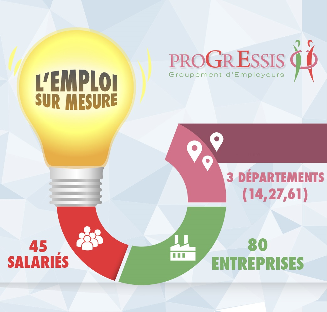 Infographie Progressis 2015